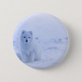 Bóton Redondo 5.08cm Fox ártico de Islândia