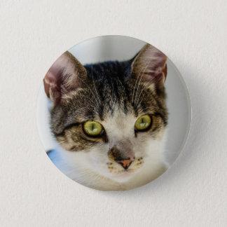 Bóton Redondo 5.08cm gato