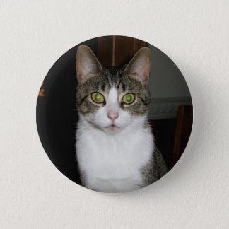 Bóton Redondo 5.08cm Gato de gato malhado com os olhos verdes grandes