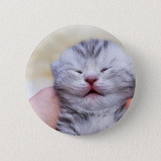 Bóton Redondo 5.08cm Gato de gato malhado de prata recém-nascido