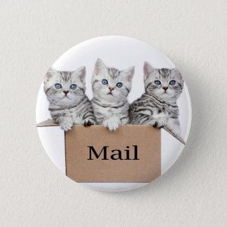 Bóton Redondo 5.08cm Gatos novos na caixa de cartão com correio da