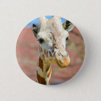 Bóton Redondo 5.08cm Girafa