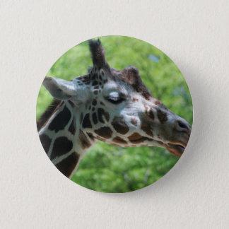 Bóton Redondo 5.08cm Girafa bonito