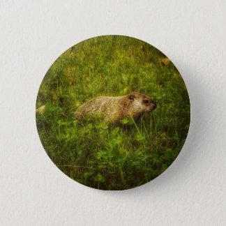 Bóton Redondo 5.08cm Groundhog em um botão do campo