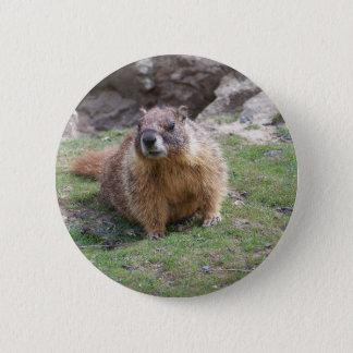 Bóton Redondo 5.08cm Marmota