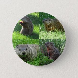 Bóton Redondo 5.08cm Mistura de Groundhog