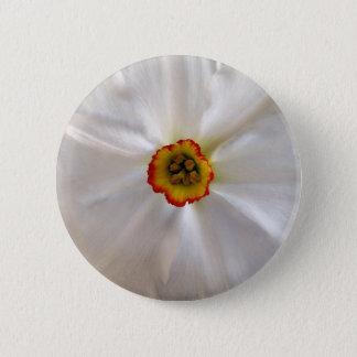 Bóton Redondo 5.08cm narciso do branco da pérola