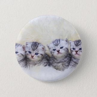 Bóton Redondo 5.08cm Ninho com os quatro gatos de gato malhado novos em