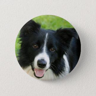 Bóton Redondo 5.08cm O cão de border collie adiciona o animal de