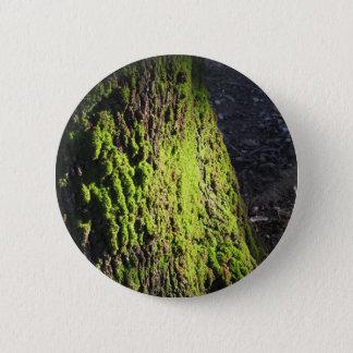 Bóton Redondo 5.08cm O musgo verde no detalhe da natureza de musgo