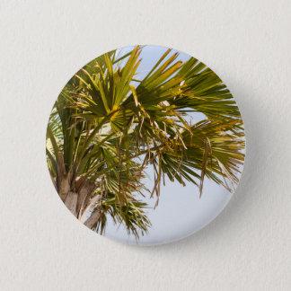 Bóton Redondo 5.08cm Palmeira da costa leste Myrtle Beach famoso