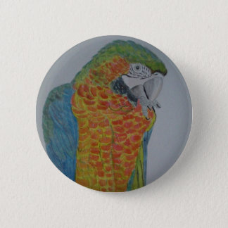 Bóton Redondo 5.08cm papagaio do Macaw do オウムパロット que mastiga a pé
