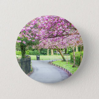 Bóton Redondo 5.08cm Parque bonito durante o primavera