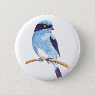 Bóton Redondo 5.08cm Pássaro azul