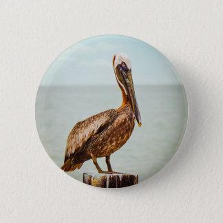 Bóton Redondo 5.08cm Pelicano bonito empoleirado sobre o oceano