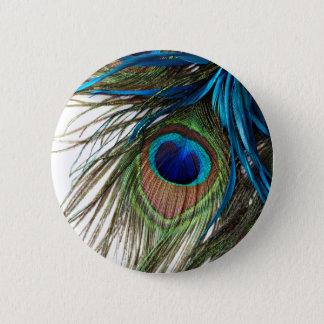 Bóton Redondo 5.08cm Pena exótica roxa do pavão do verde azul