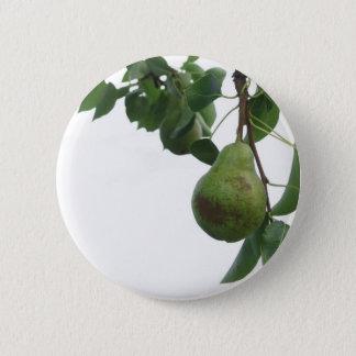 Bóton Redondo 5.08cm Peras verdes que penduram em uma árvore de pera