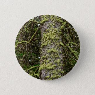 Bóton Redondo 5.08cm Pine_Tree_Moss