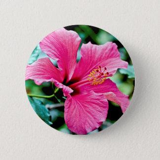 Bóton Redondo 5.08cm Pink hibisco