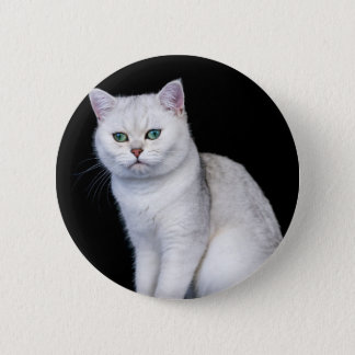Bóton Redondo 5.08cm Prata preta gato britânico protegido do cabelo