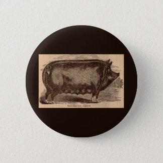 Bóton Redondo 5.08cm Raça do século XIX da porca de Berkshire do