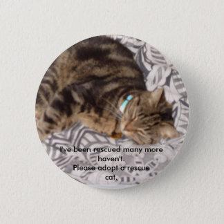 Bóton Redondo 5.08cm Salve por favor um gato