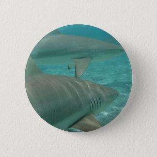 Bóton Redondo 5.08cm shark
