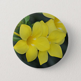 Bóton Redondo 5.08cm South Carolina Jessamine amarelo