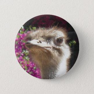 Bóton Redondo 5.08cm Sul - botão africano da cara da avestruz