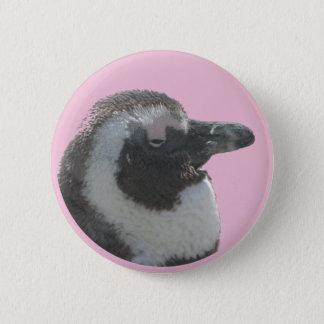 Bóton Redondo 5.08cm Sul - botão customizável do pinguim africano