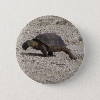 Bóton Redondo 5.08cm Tartaruga de deserto