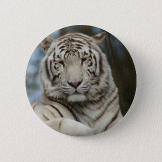 Bóton Redondo 5.08cm Tigre branco