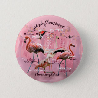 Bóton Redondo 5.08cm Tipografia cor-de-rosa | do flamingo personalizado