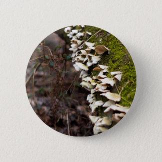 Bóton Redondo 5.08cm tree_moss_winter mushroom_downed