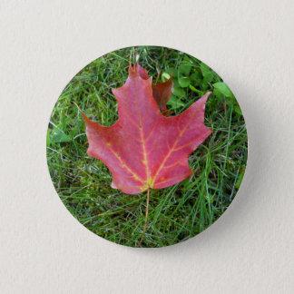 Bóton Redondo 5.08cm Uma folha de bordo vermelha na grama