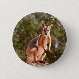 Bóton Redondo 5.08cm Wallaby de rocha amarelo-footed australiano