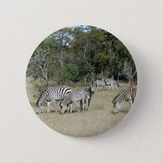 Bóton Redondo 5.08cm Zebras
