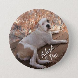 Bóton Redondo 7.62cm Botão redondo da adopção irresistível do cão do
