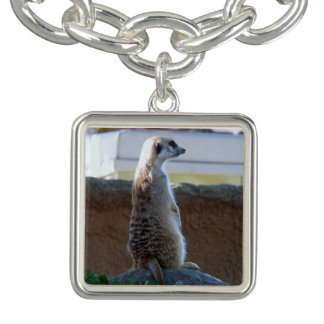 Bracelete do encanto de Meercat