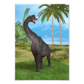 Brachiosaurus do dinossauro impressão de fotos
