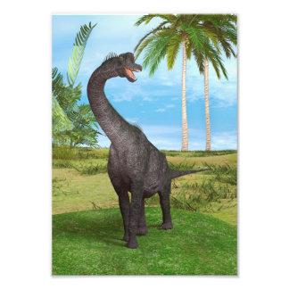 Brachiosaurus do dinossauro impressão fotográfica