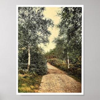 Brackendale, a movimentação, Camberley, vintage de Posteres