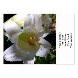 Branco do lírio de páscoa modelo cartões de visitas