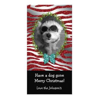Brilho bonito da zebra do quadro da foto do Natal Cartão Com Foto