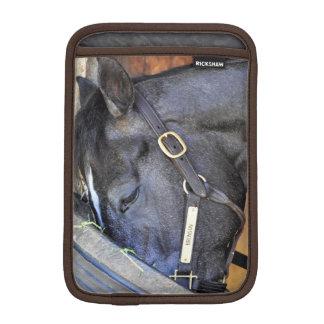 Bronson Luva Para iPad Mini