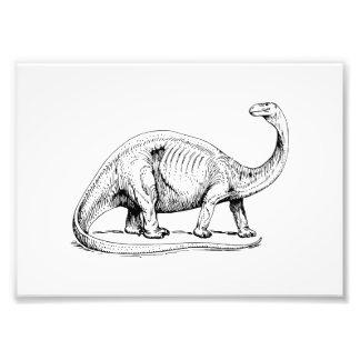 Brontosaurus Artes De Fotos