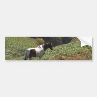 Brown e cavalo branco na lagoa do outono adesivos