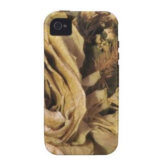 Brown floresce 2 mf capas para iPhone 4/4S
