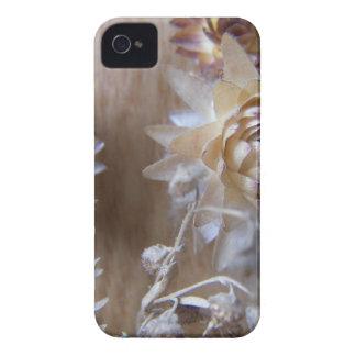 Brown floresce o mf capinhas iPhone 4