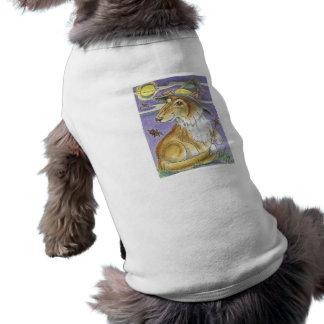 Bruxa Bewitching do Dia das Bruxas do cão do Colli Roupas Para Cães